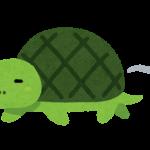 亀頭増大についてのお話
